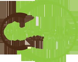 Chirohealth Clinic Logo